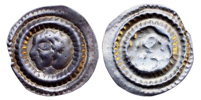 Bracteata ÉH 122