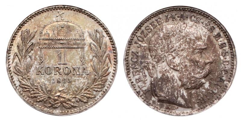 1 Korona 1895